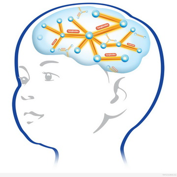baby-brain.jpg